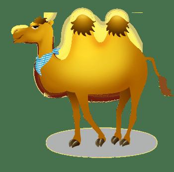 Wisesorbent Camel
